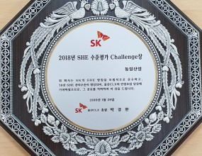Challenge Award of SHE in 2018
